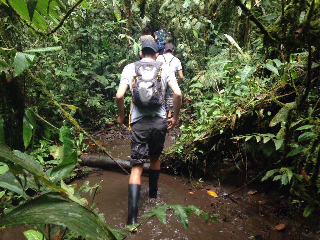 ecuador amazon jungle tour