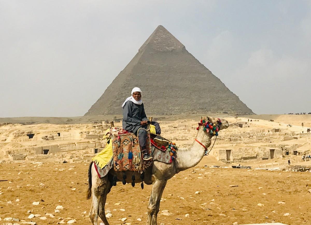 Pyramid Giza Egypt camel